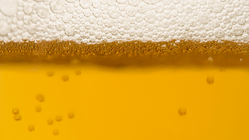 Yeast: Carbonation to Fermentation